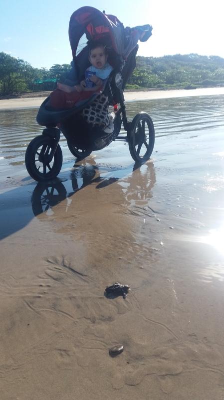 ella_turtle